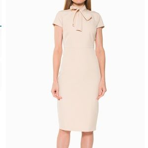 Alexia Admor Tie Neck Cap Sleeve Sheath Dress 8